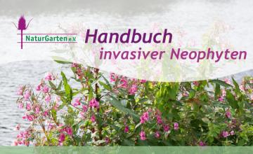 Ein Handbuch mit praktischen Tipps zur Erkennung, Vermeidung und Bekämpfung invasiver Neophyten.