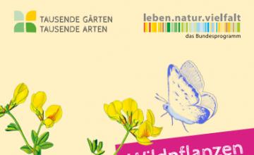 Eine Sammlung weiterführender Literatur, Tipps und Informationen zum eigenen Naturgarten finden Sie unter https://www.tausende-gaerten.de/service/.